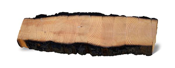 烧焦的胶合木材料