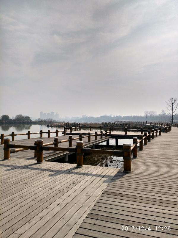 """陕西汉中""""一江两岸""""湿地公园红雪松木栈道项目"""