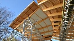 正交胶合木的特性和特点