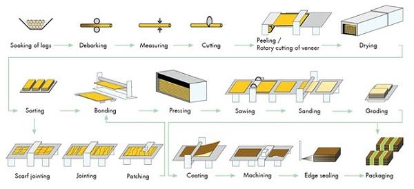 胶合板制作过程