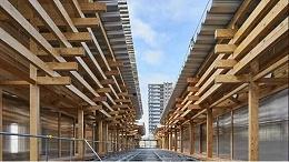 东京奥运会的胶合木结构特色文化