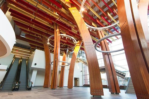 胶合木木结构