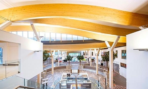 胶合木结构建筑